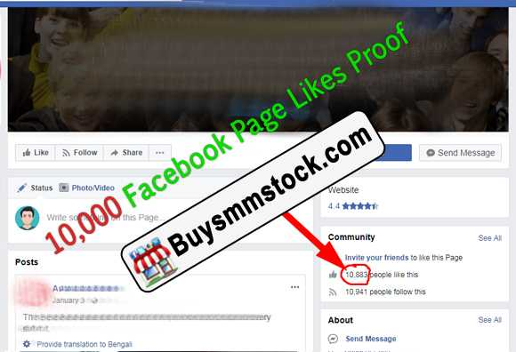 10000 Facebook Page likes proof