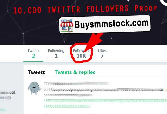 10000 Twitter Followers Proof