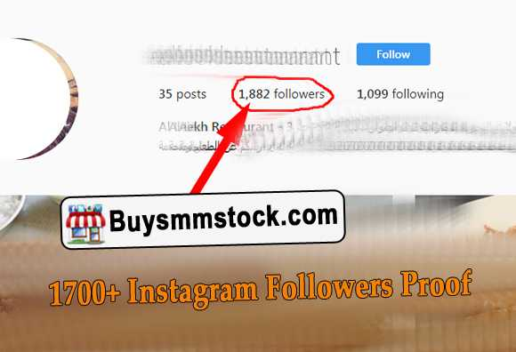 1700+ Instagram Followers Proof