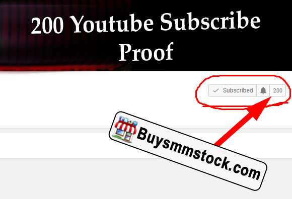 200 Youtube Subscribe Proof