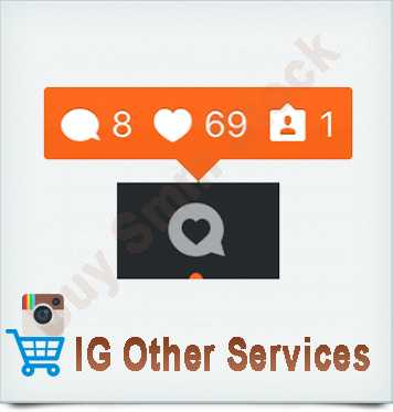 Instagram Other Services